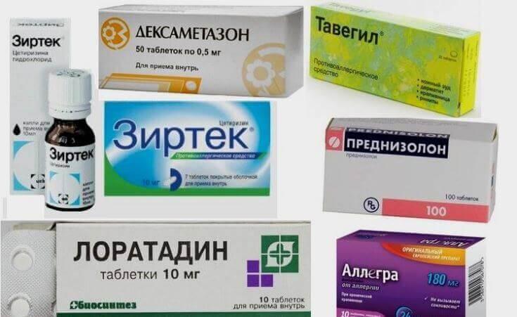 Таблетки от аллергии для собак